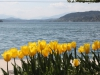 ostern_woerthersee-6